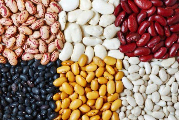 Фасоль - источник белка