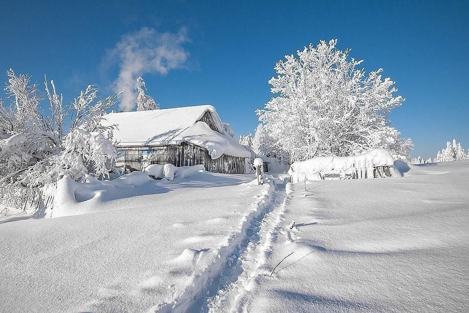 Настоящая снежная зима❄