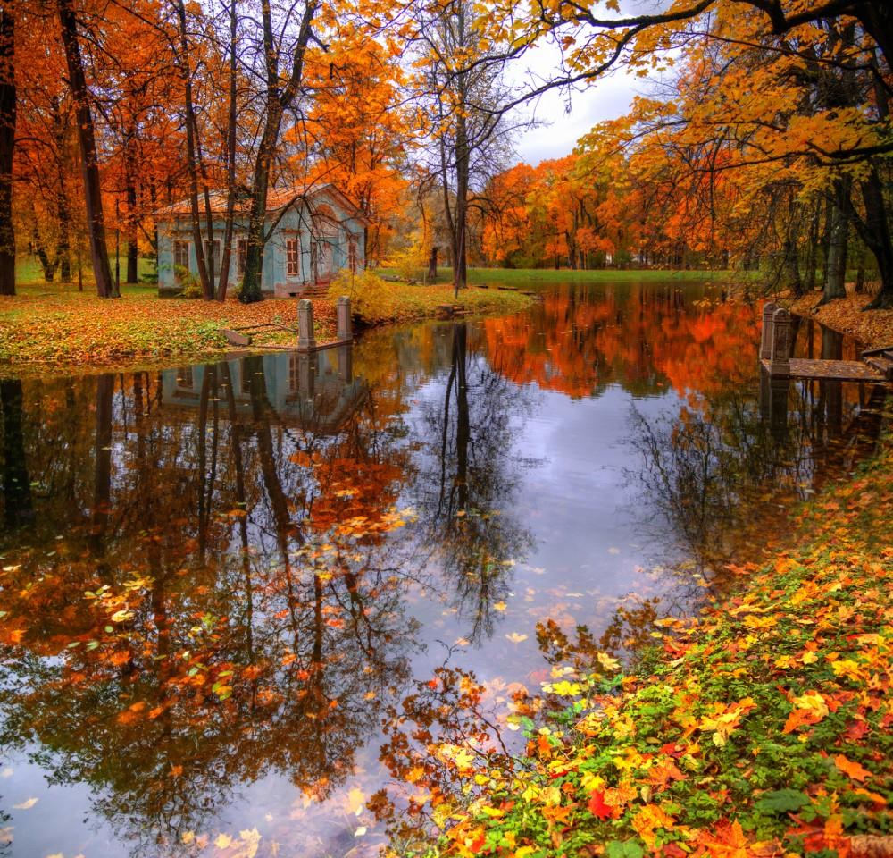 Осенняя пора - очей очарованье!