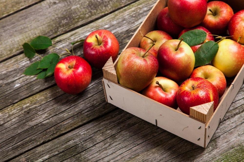 Яблочки с чернобыля