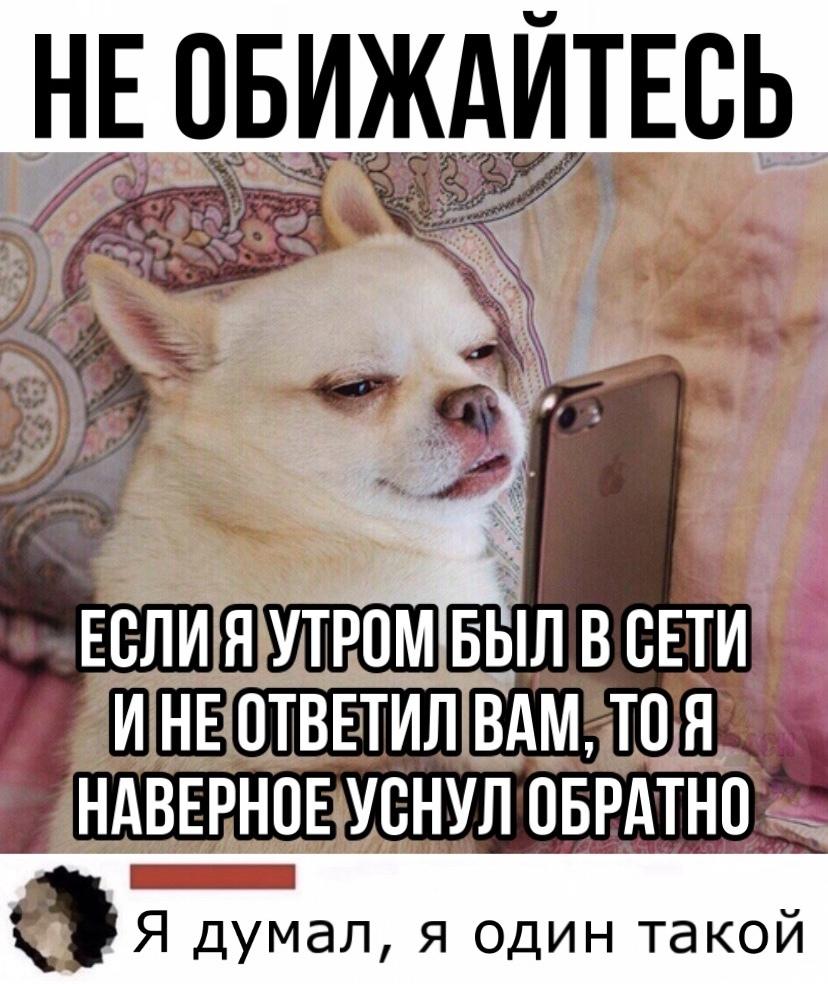 Самые смешные картинки и мемы из интернета! НЕ БАЯН!!!
