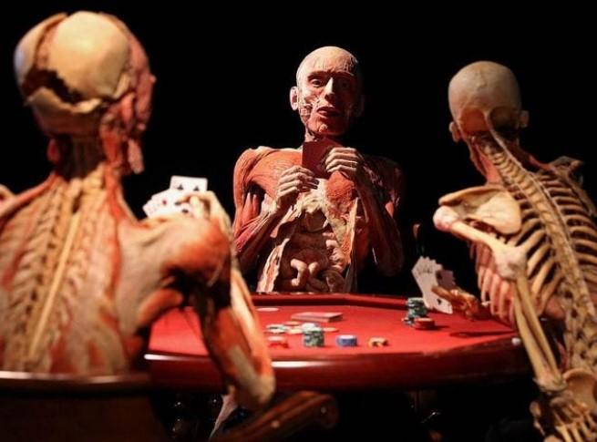 В какой части человеческого тела находится эпистрофей?