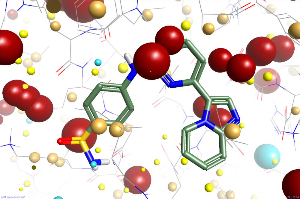Какой белок выделяет организм в ответ на вторжение вирусов?