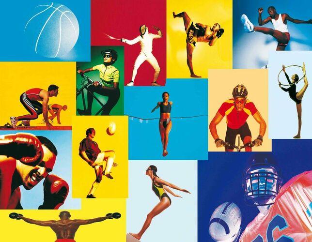 Систематические и грамотно организованные занятия физическими упражнениями укрепляют здоровье, так как…