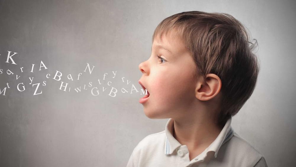 Сколько форм речевых нарушений выделяет в логопедии клинико-  педагогическая классификация?